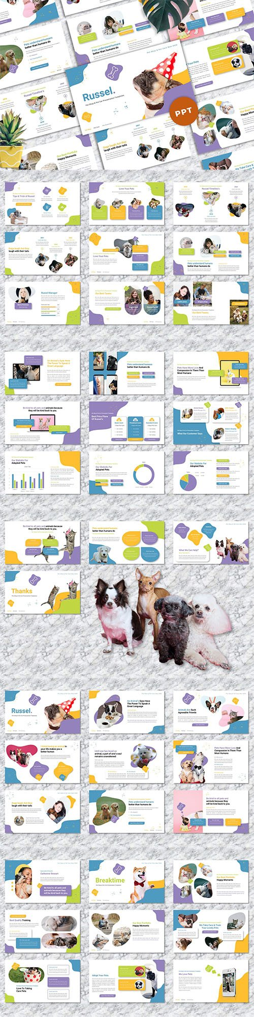 Russel - Pet Care Powerpoint Templates