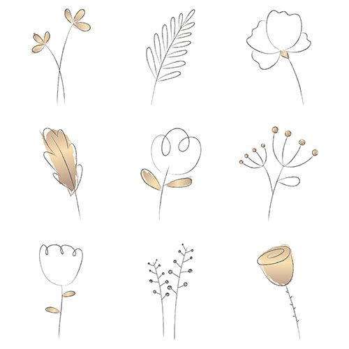 Collection of flower logo png